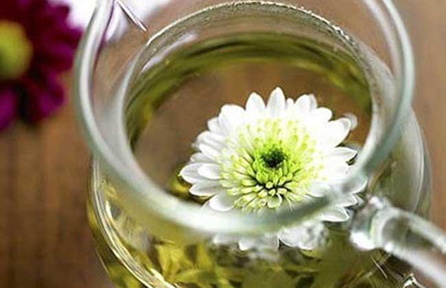 菊花茶的泡法