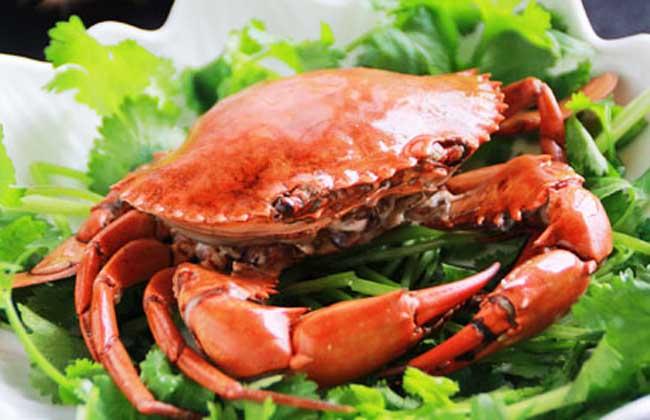 蒸螃蟹的营养-做法调料-黔农网排骨汤需要加食谱吗图片