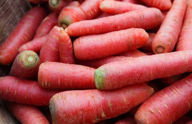胡萝卜素的作用有哪些?