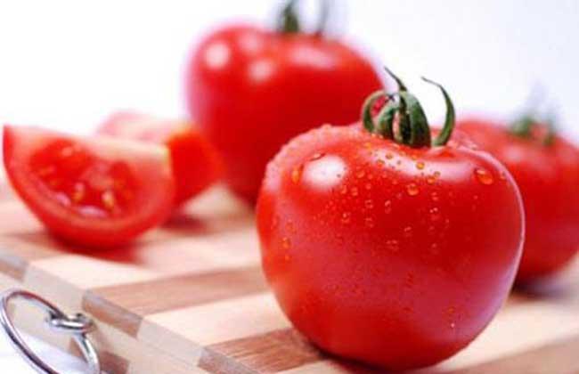 孕妇可以吃西红柿吗?