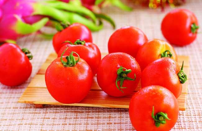 西红柿怎样减肥最有效?