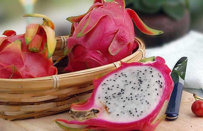 火龙果减肥法的正确吃法