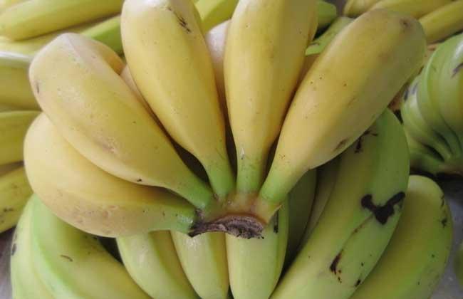 香蕉皮能吃吗
