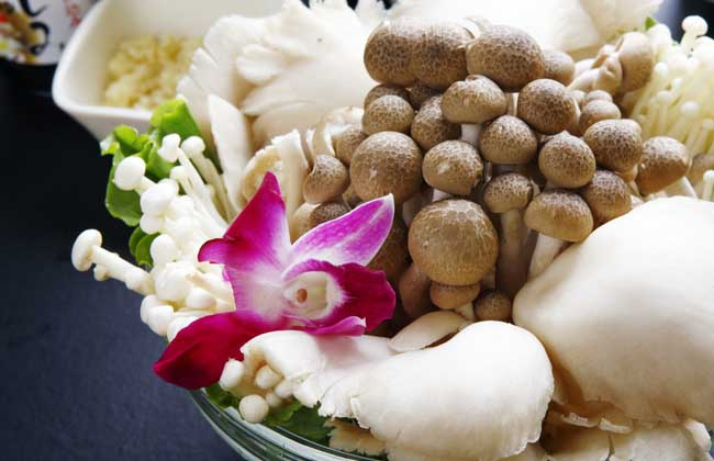 香菇的功效与作用