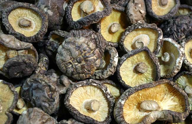 香菇多少钱一斤
