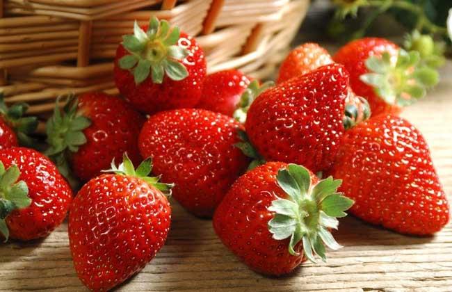 草莓的生长环境