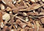 柴胡的种植前景