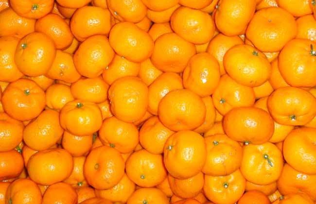 柑橘的存储方法