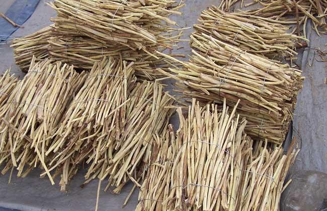甘草的种植条件和种植效益