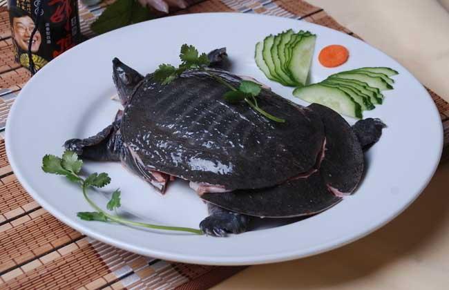 吃甲鱼过敏怎么办