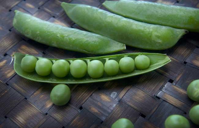 豌豆、黄豆、蚕豆的区别