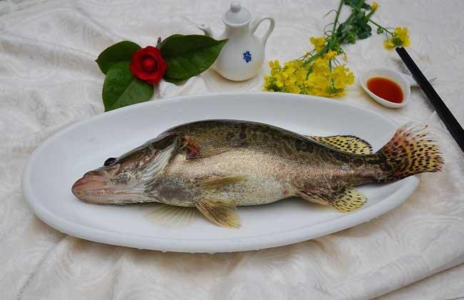 桂鱼的做法大全