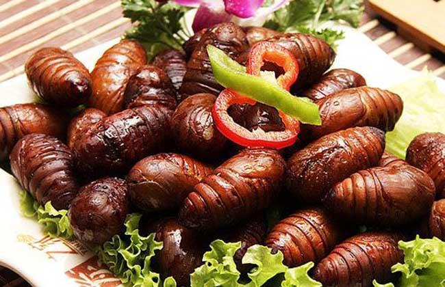 孕妇能吃蚕蛹吗