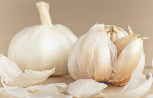 大蒜的亩产量多少斤