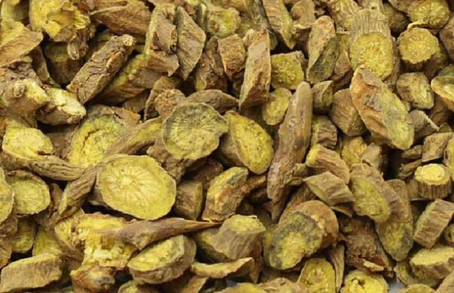 黄芩的市场价格