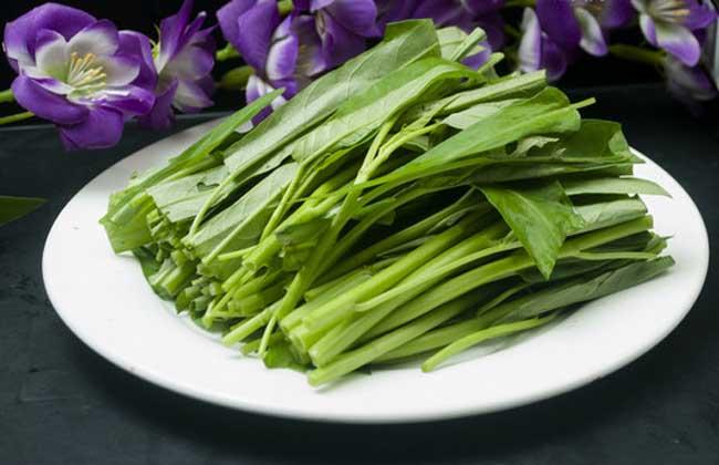 空心菜的叶子能吃吗