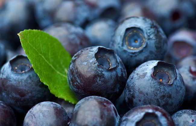 蓝莓的功效与作用