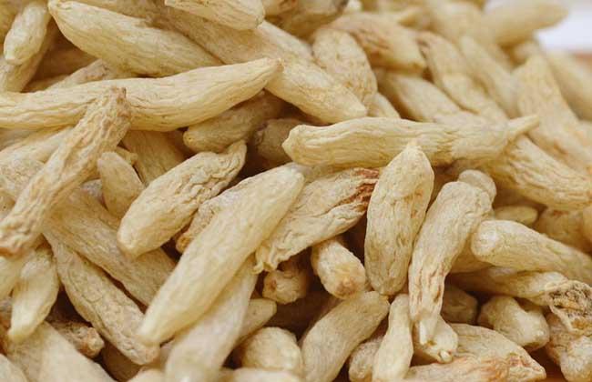 麦冬的吃法大全