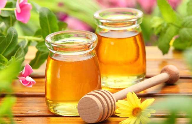 蜂蜜的作用与功效