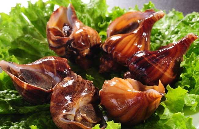 海螺的做法大全