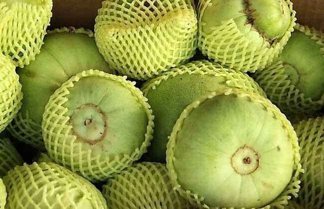 香瓜的营养价值