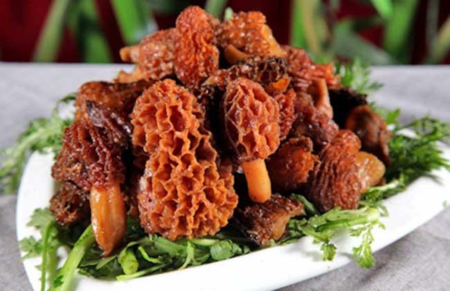 羊肚菌的常见做法