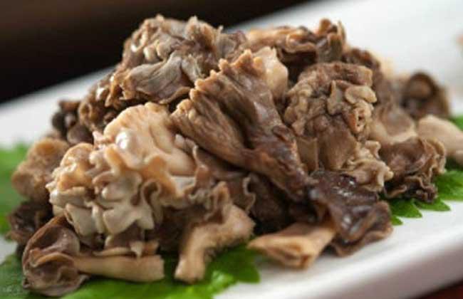 羊肚菌烧肉