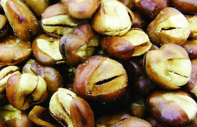 蚕豆和什么不能一起吃
