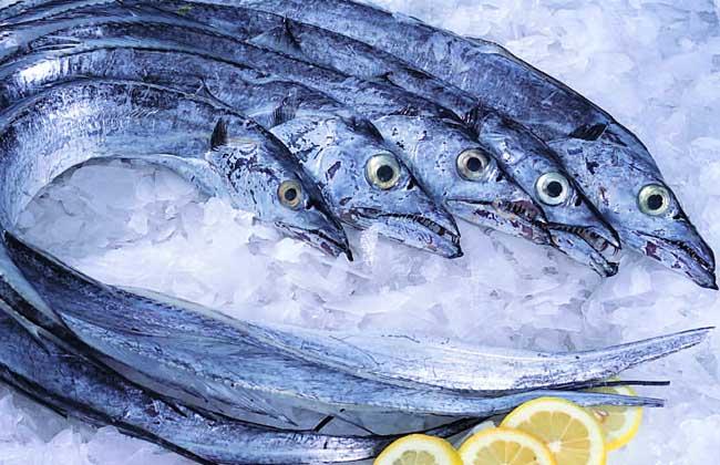 带鱼是深海鱼吗