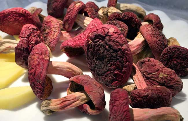 红菇的市场价格