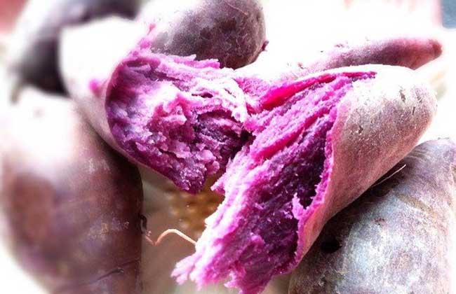 紫薯的营养价值