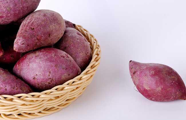 紫薯的做法大全