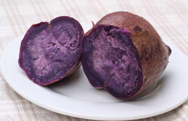 紫薯价格多少钱一斤