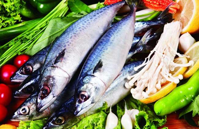 鲅鱼的营养价值