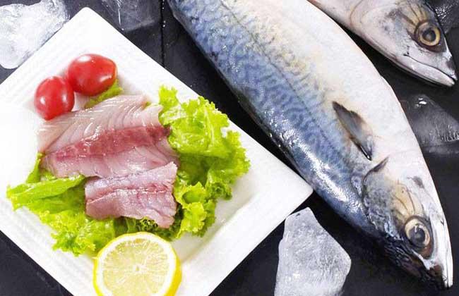 鲅鱼和沙丁鱼的区别