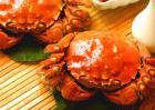 孕妇可以吃大闸蟹吗?