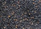 黑芝麻的营养价值