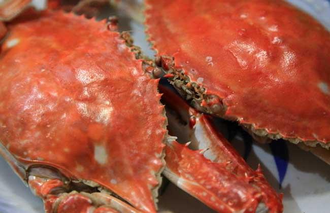 梭子蟹死了能吃吗