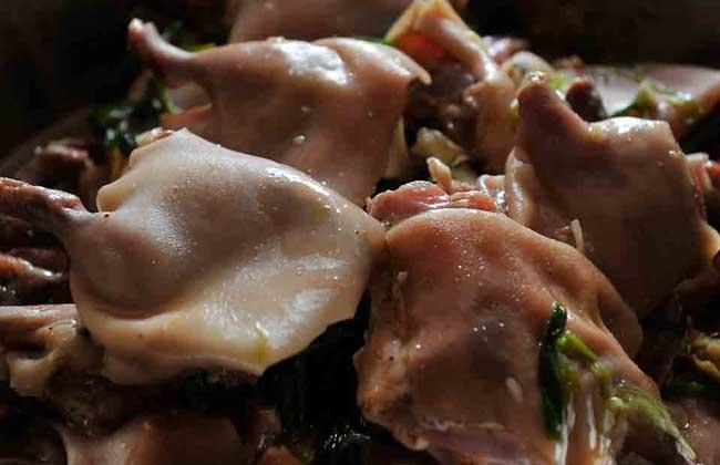 老鼠肉能吃吗?