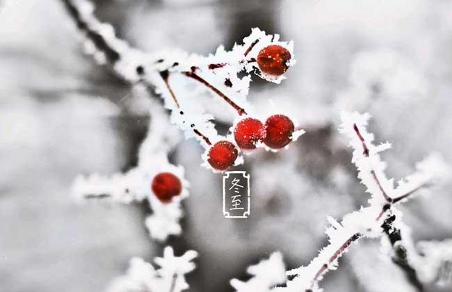 冬至是几月几日