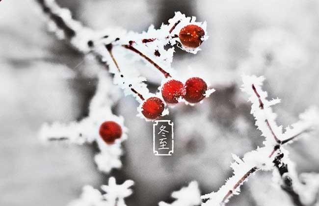 冬至的饮食习俗有哪些?
