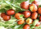 红枣吃多了会怎么样?
