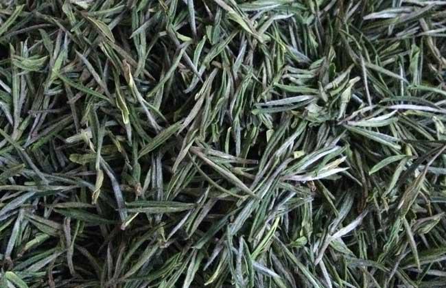 安吉白茶价格多少钱