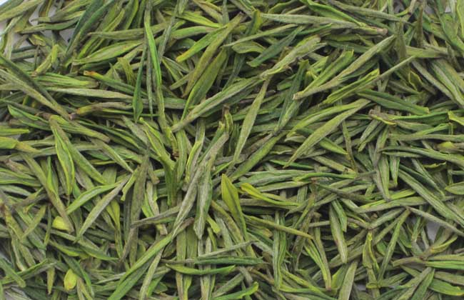 安吉白茶的功效与作用