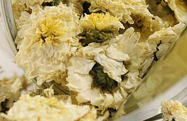 白菊花茶的功效与作用