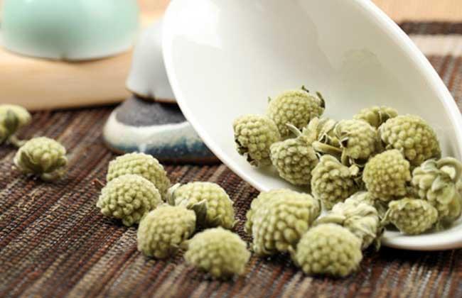 绿萝花茶的功效与作用