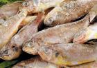 小黄花鱼的家常做法