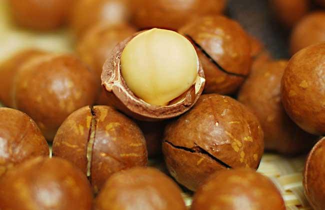 产妇能吃坚果吗