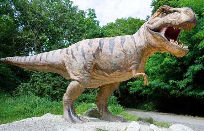 蛇颈龙图片大全_恐龙的种类图片大全_恐龙是怎么灭绝的_最大的恐龙是什么龙 - 黔 ...