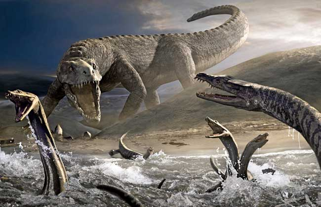 恐龙的资料有哪些?